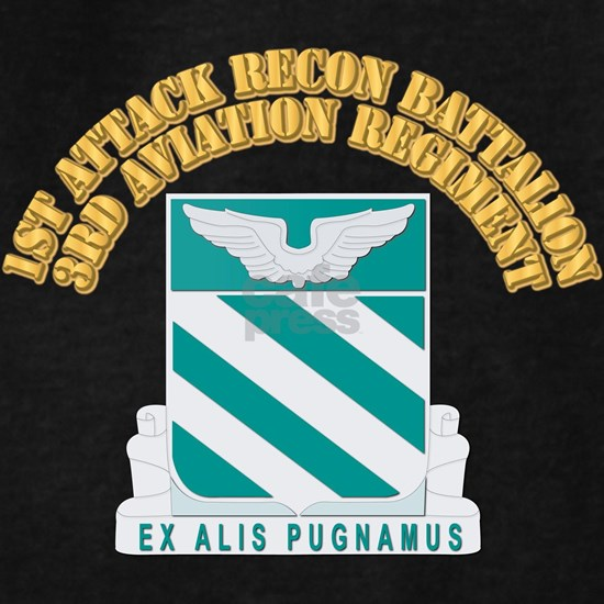 DUI - 1st Attack/Recon Bn - 3rd Aviation Regt with